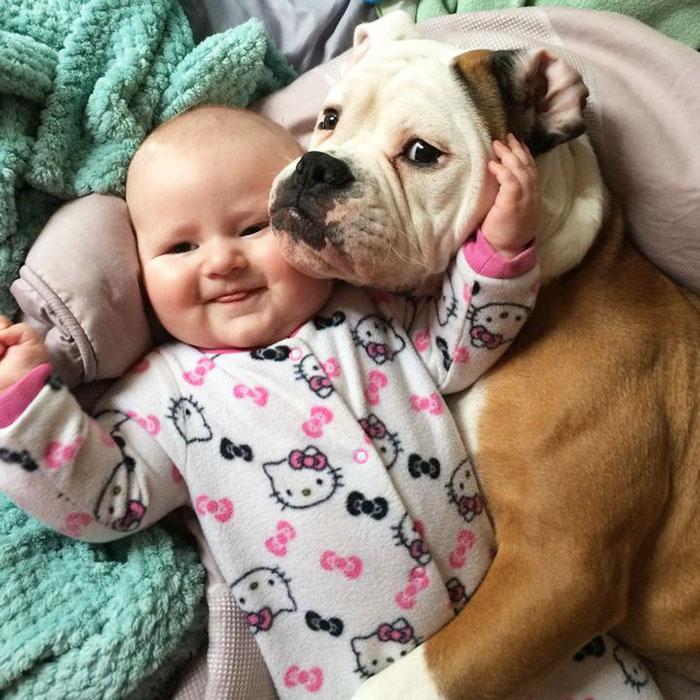 Собака расстраивается, когда она от ребенка слишком долго.