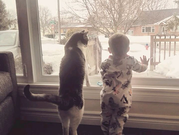 kids-and-cats-7__605