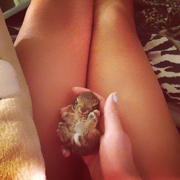 cute-bunnies-108__605