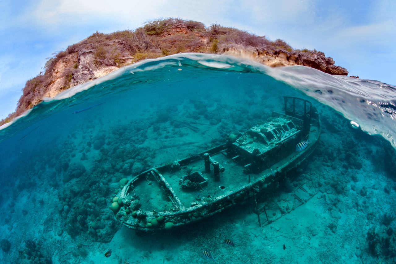 UK-Underwater-Photographer-of-the-Year-2016-Winners-08