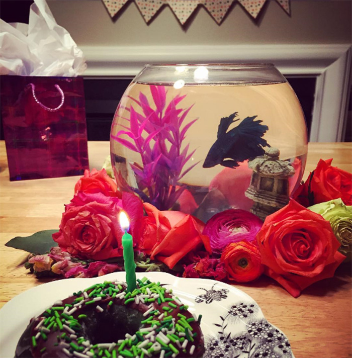 Pets-That-Have-Better-Birthday-Parties-Than-You-5706abb06b852__700