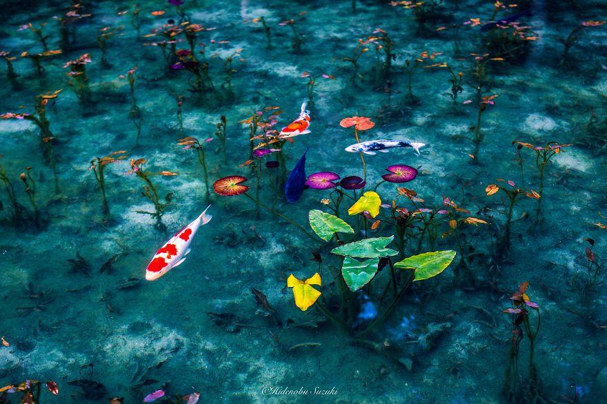 japanese_pond_02
