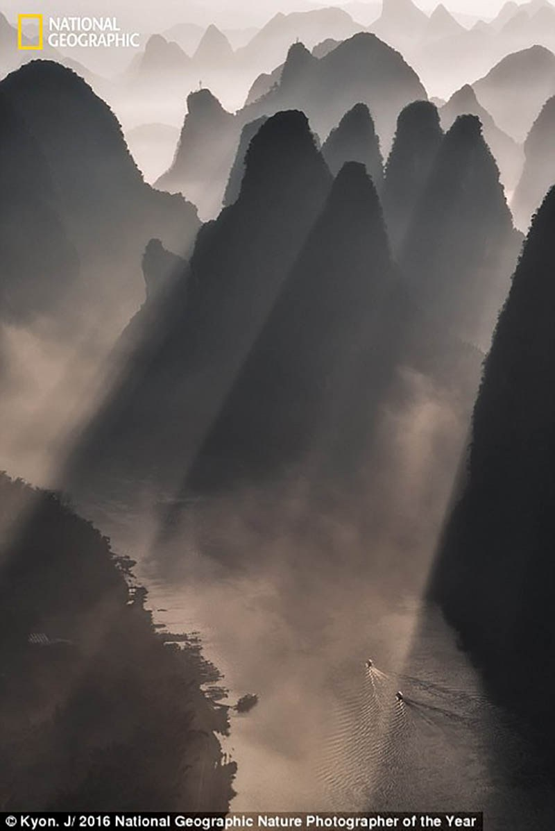 national-geographic-nature-photographer-of-the-year-2016-vinegret-12
