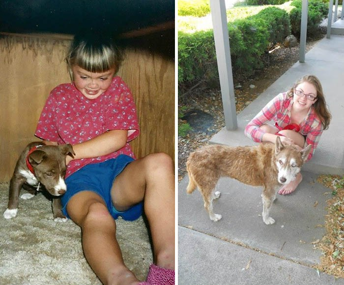 before-after-pets-growing-old-first-last-photos-vinegret-11