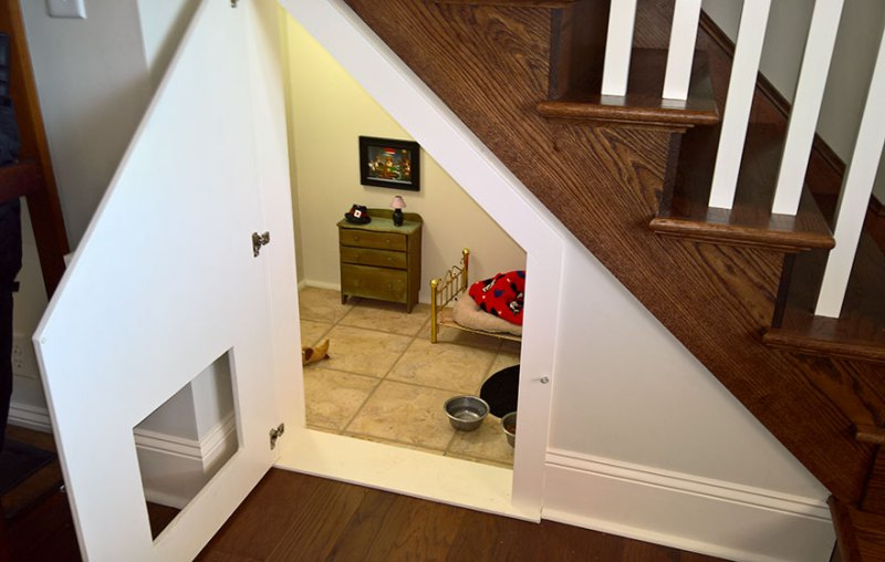 room-for-chihuahua-dog-vinegret-2