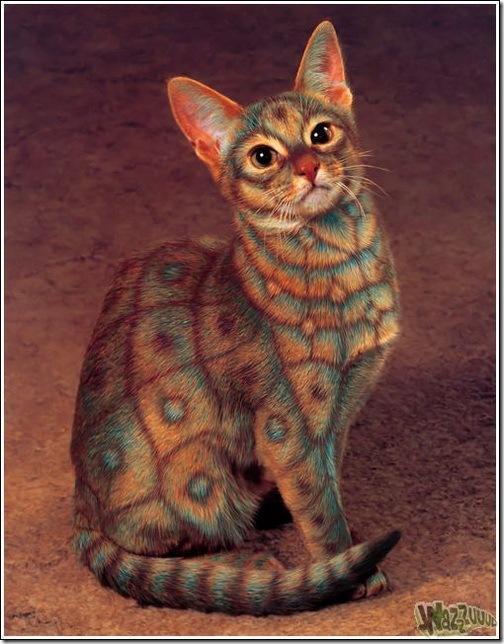 paintcat-02