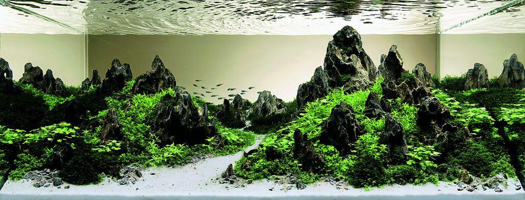 akvarium-18