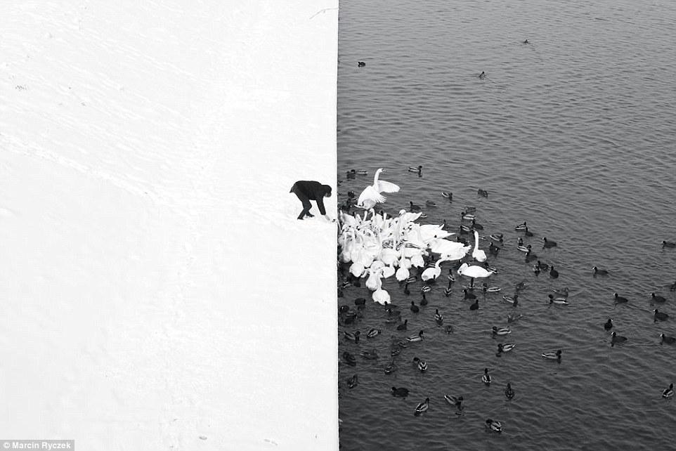 pobediteli-fotokonkursa-siena-international-photo-awards-12
