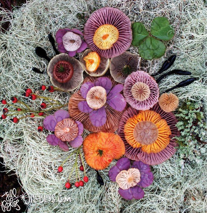 яркие композиции из грибов