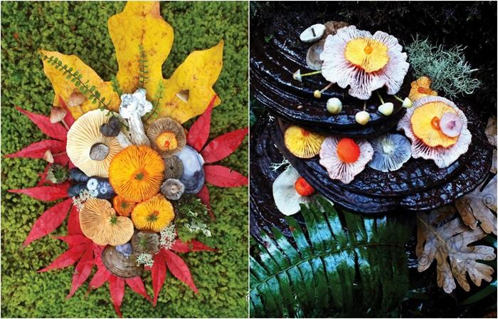 Художник, натуралист, педагог и фермер Джилл Блисс живет на небольшом острове, на северо-западе Тихого океана.