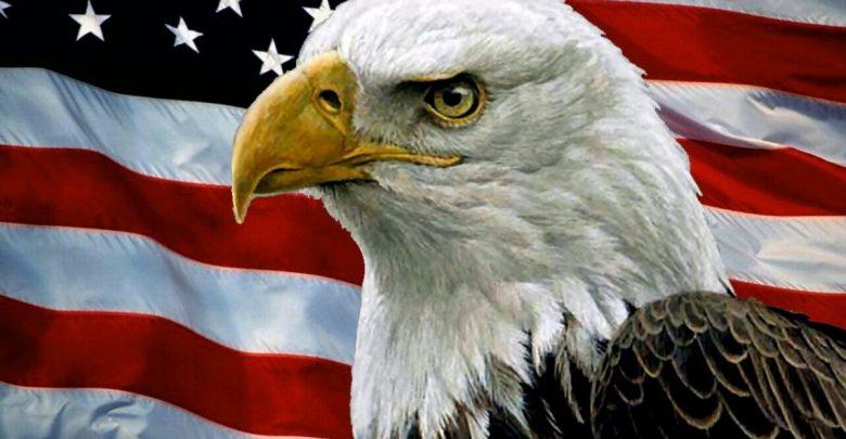 Американский белый орел