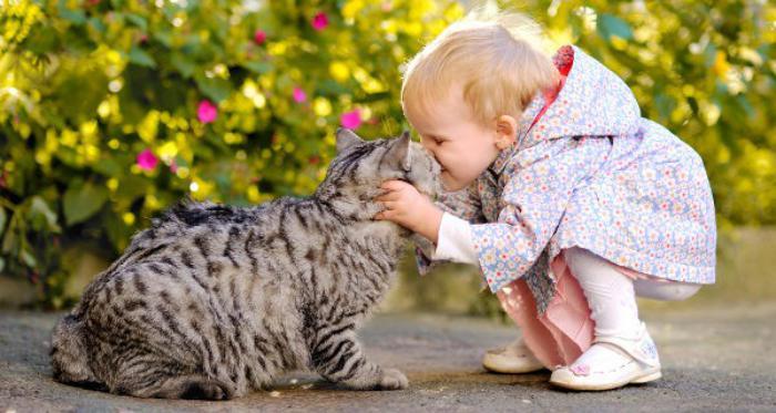 любовь к животным