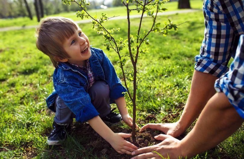 Обучайте детей трудовым навыкам