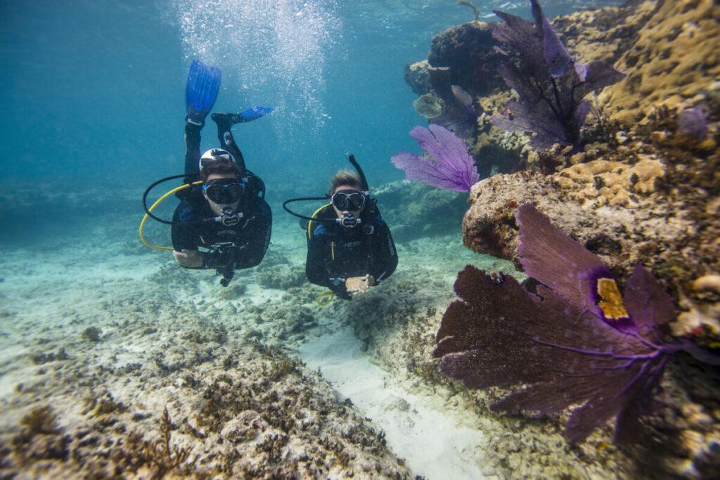 подводное плавание с аквалангом - безопасность